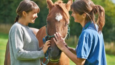 Women talking with horse