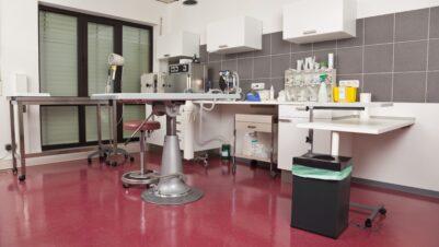 vet practice room