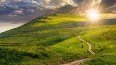 green grass hills